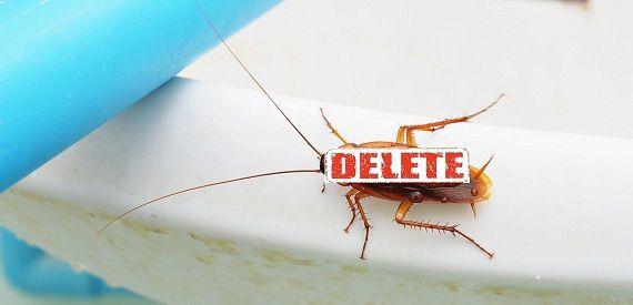 cockroaches-in-toronto-bathroom