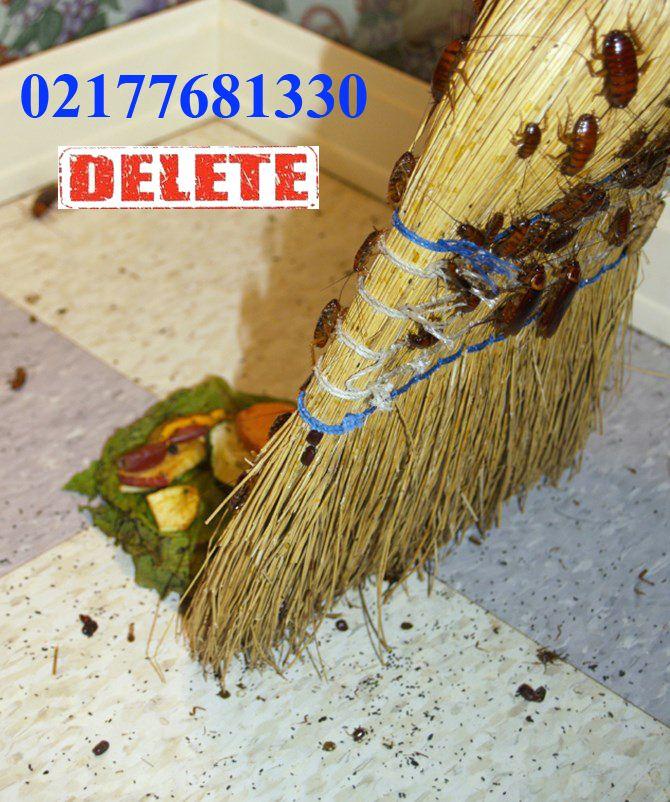 istock_000001216734small_roach-broom-2