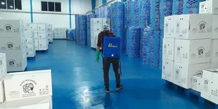 سمپاشی شرکت تجهیرات پزشکی علیه سوسک